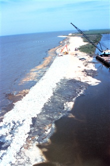 Southeast of area 1; the northwest view of the beach area fronting the easternend of Mobile Canal.