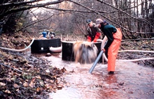 Cleaning gravel from the streambed using a suction pump.The device, in the background,  is a modified gold dredge and was used byAmericorp and NOAA volunteers.