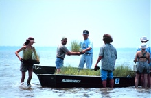 Volunteers move planting material to the island.