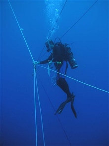 Marine scientist spiderman Misha Matz coordinates a blue water dive for 4companions - each at the end of a rope tether and each rope kept taut by aweight and pulley system that is attached to a toilet flange.
