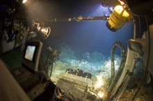 The JSL submersible offers a panoramic view of the underwater world.  This is a view of dense coral development off North Carolina in about 400meters.  Life on the Edge 2005 Expedition.