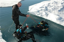 Ice Divers Katrin Iken and Elisabeth Calvert descend below the ice througha hole in a melt pond while Shawn Harper teds the safety line.