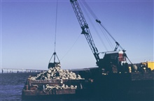 The crane and barge used to construct the cobble reef. The crane was ownedby Harbor Marine Corp.