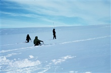 Probing for crevasses on Skelton Glacier - progress sometimes only a mile/day.Note lifelines on men probing.  McMurdo Station to South Pole traverse.