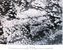 Ice Crystals. In: The Heart of the Antarctic, Volume II, by E. H. Shackleton, 1909. P. 362.Library Call Number G149 S52.