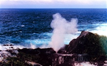 A blow-hole shooting pressurized water high into the air.